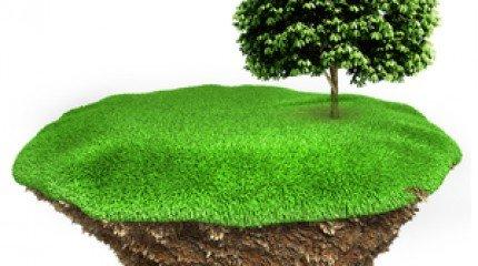 Как купить землю по кадастровой стоимости?